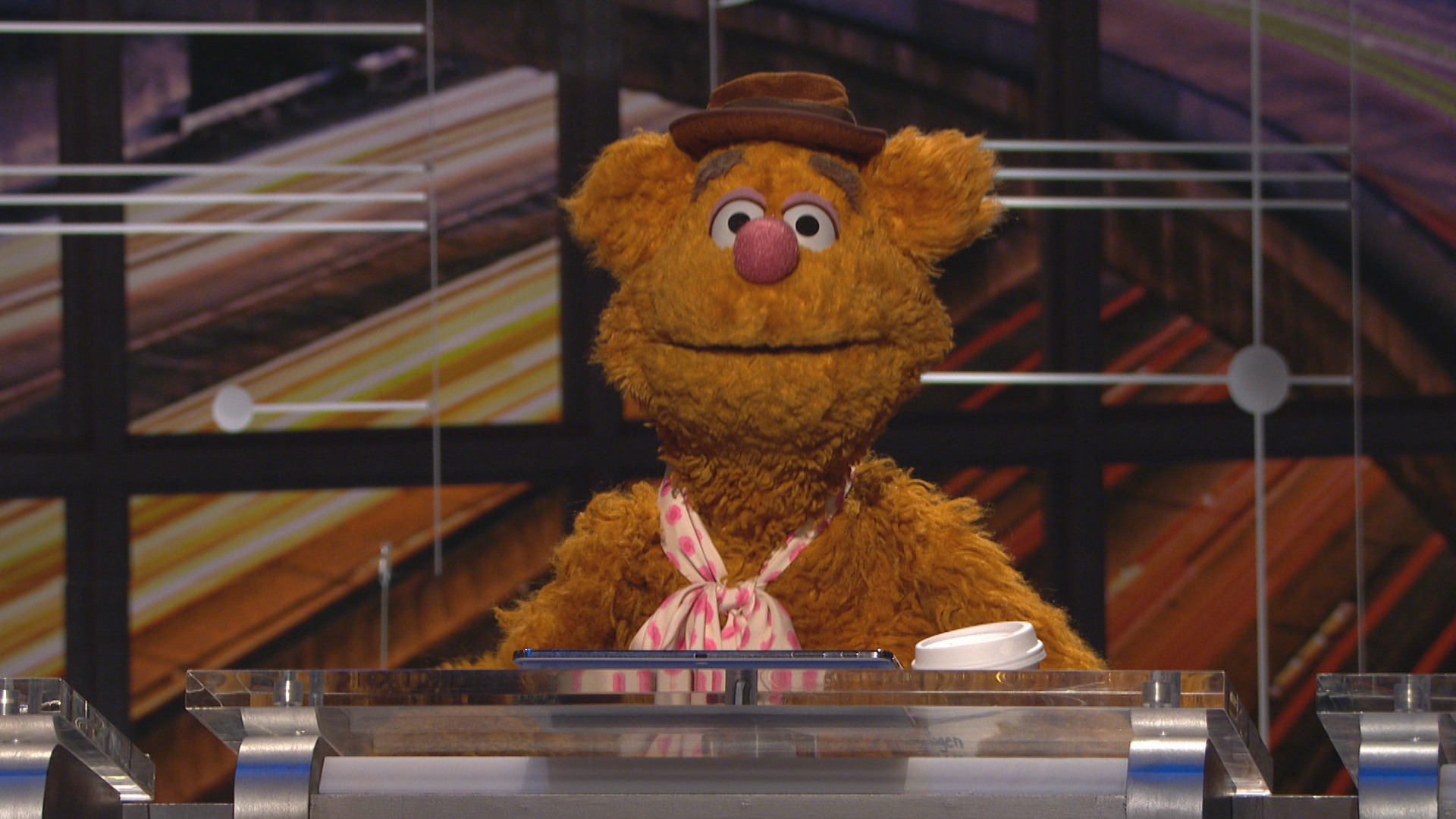 @MIDNIGHT - FOZZIE BEAR COMPETES FOR POINTS!